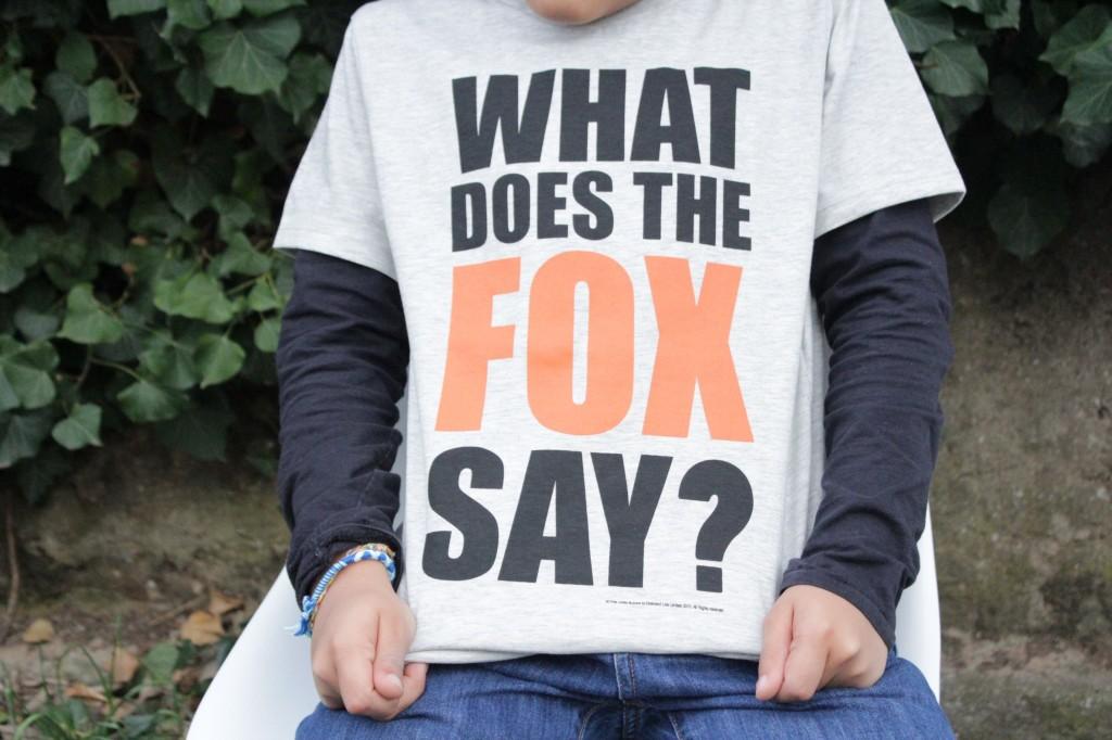 chouette kit et fox01
