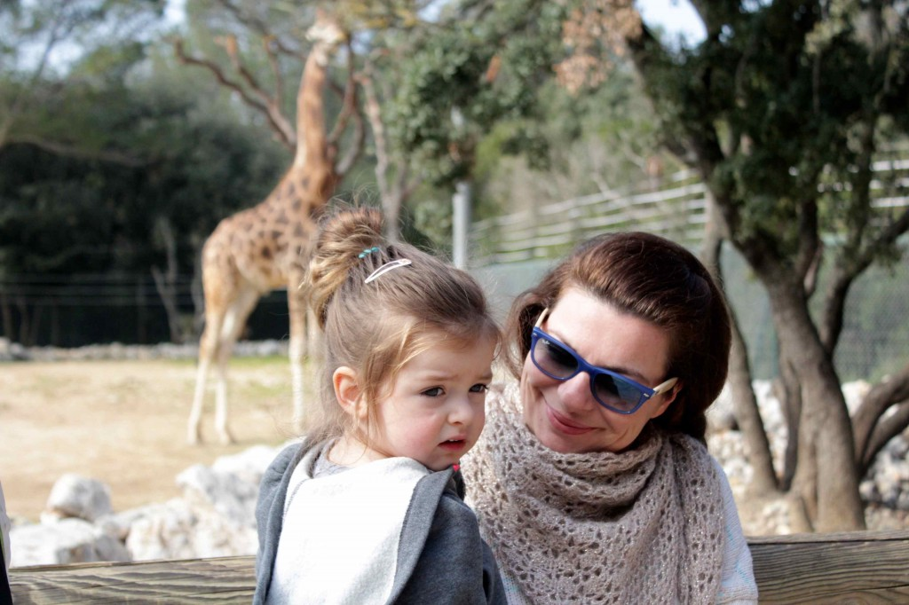 girafe10