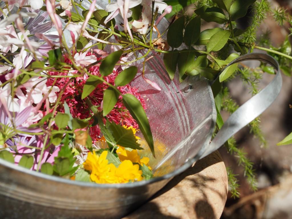 mandala-fleur