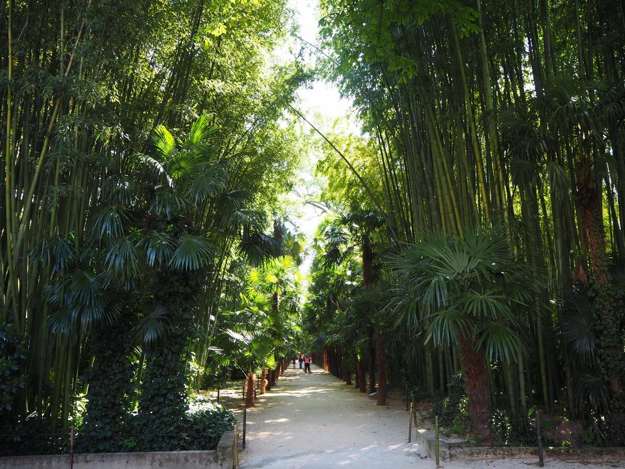 Pour les vacances la bambouseraie d 39 anduze ritalechat - La bambouseraie a anduze ...