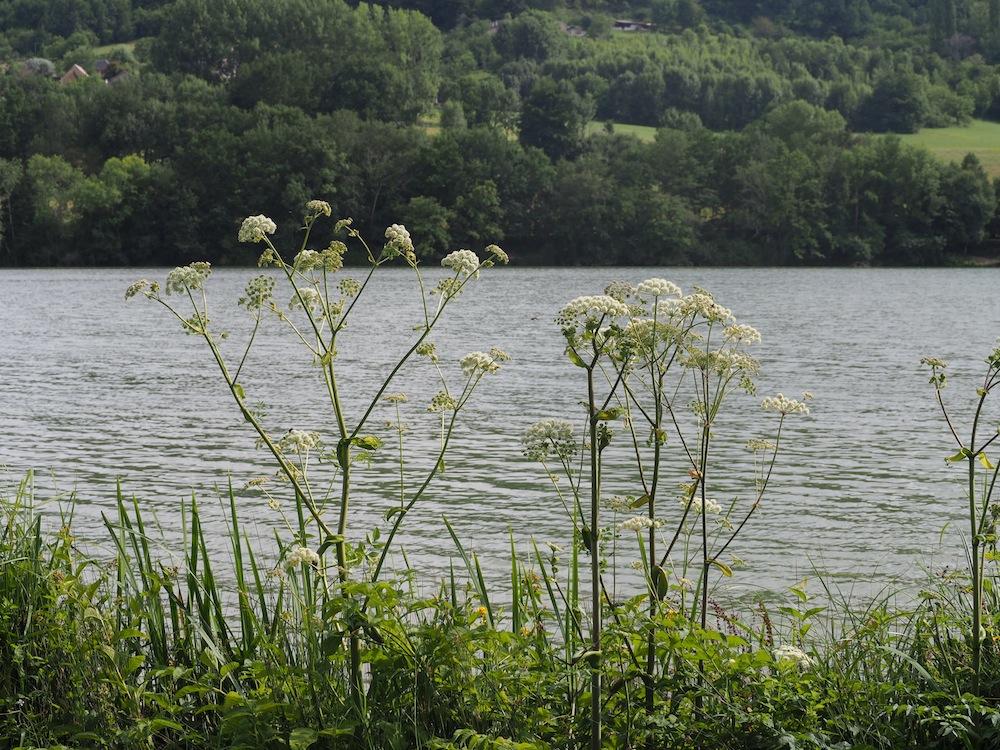 lac de causse