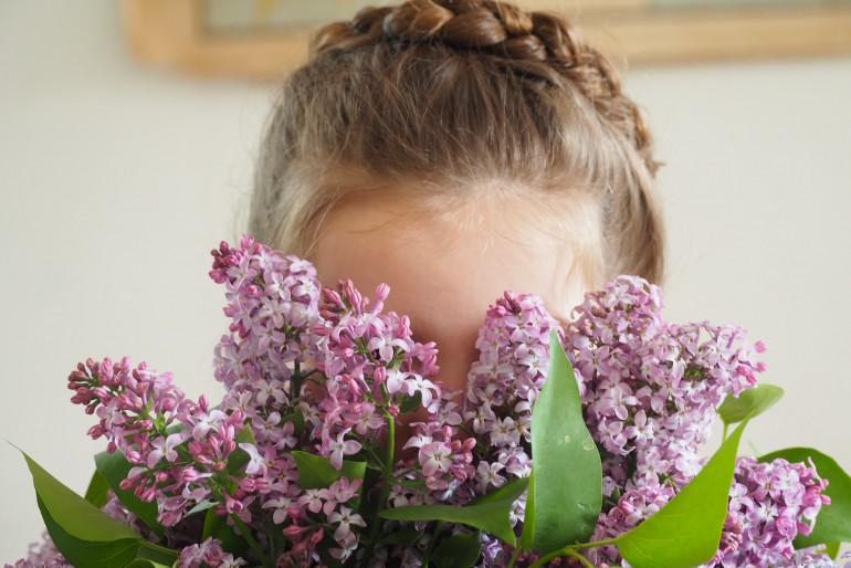 Trois bouquets de lilas